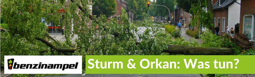 Sturm & Orkan: Wie Sie sich und Ihr Auto schützen