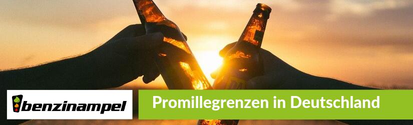 Promillegrenzen in Deutschland Blog